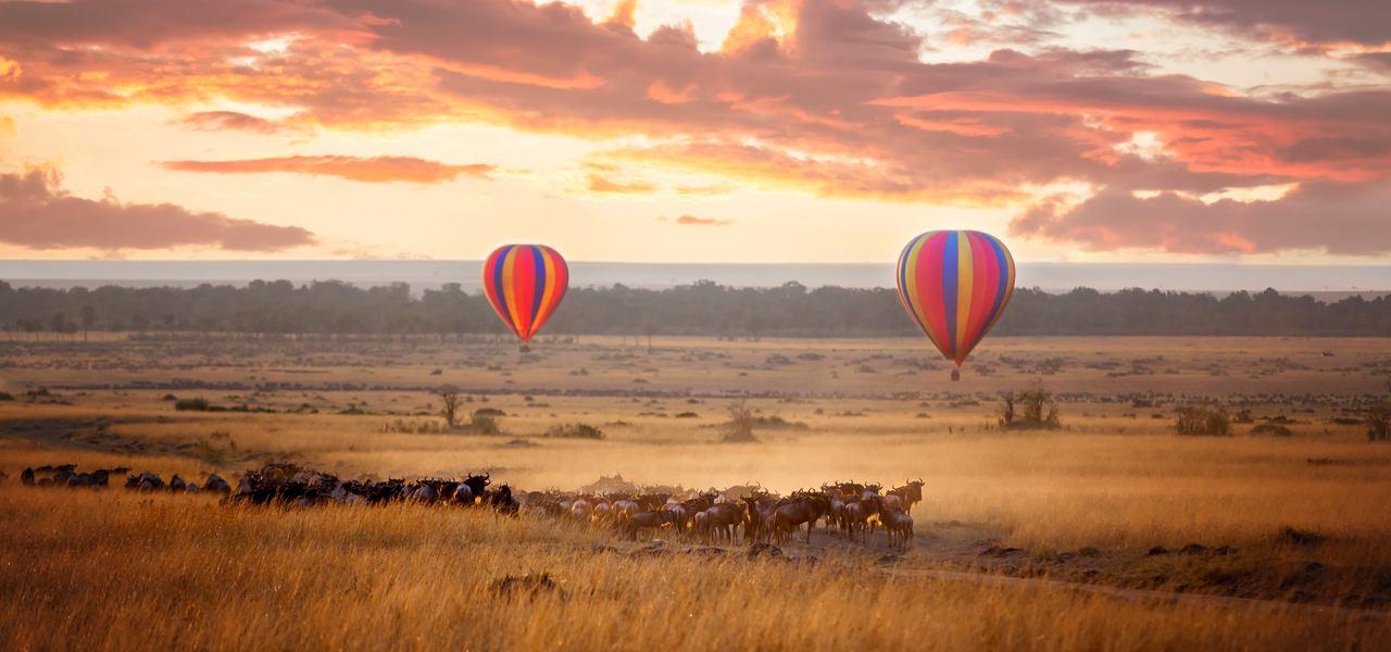 选择旅游包机到达偏远地区,乘坐热气球在日落时分飞过成群的动物